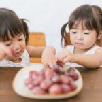 美味しさと安全性で選ぶ!おすすめの食材宅配サービスランキング!