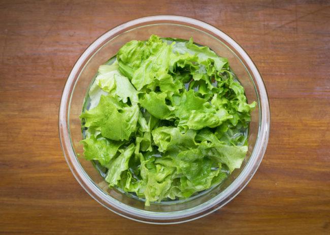 美味しさが長続きする正しい野菜の保存方法とは?冷凍保存で栄養価は失われるのか
