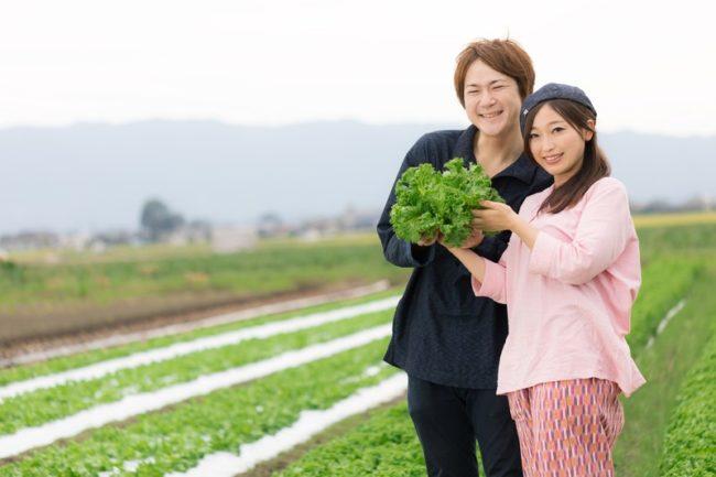 野菜と家族