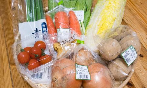 有機野菜宅配ビオ・マルシェの評判や口コミって本当?実際に契約して体験レビュー!