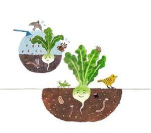 坂ノ途中の野菜